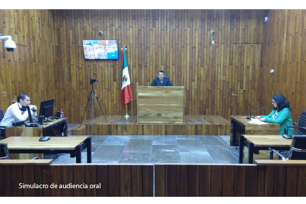 Del 1 de enero al 30 de abril de 2016, se han realizado un total de 111 juicios orales en esta materia